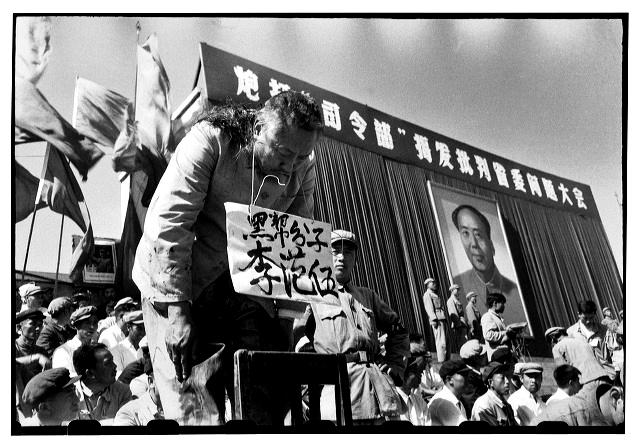 O governador Li Fanwu tem a cabeça raspada por jovens da Guada Vermelha. Harbin, província de Heilongjiag, 12 de sebembro de 1966