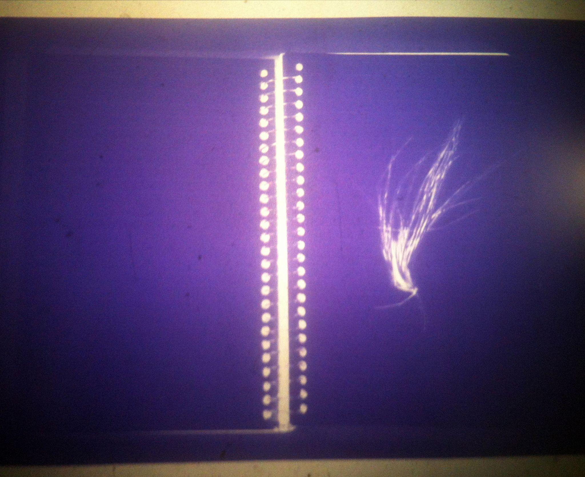 microfilme_caderno