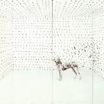 Exposição traz arte e fotografia do acervo do MAC USP