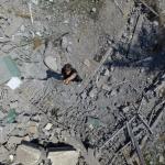 Um panorama fotográfico da guerra de Gaza