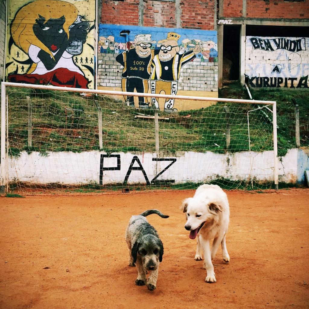 Alexandre Urch © Paraty em Foco/Divulgação