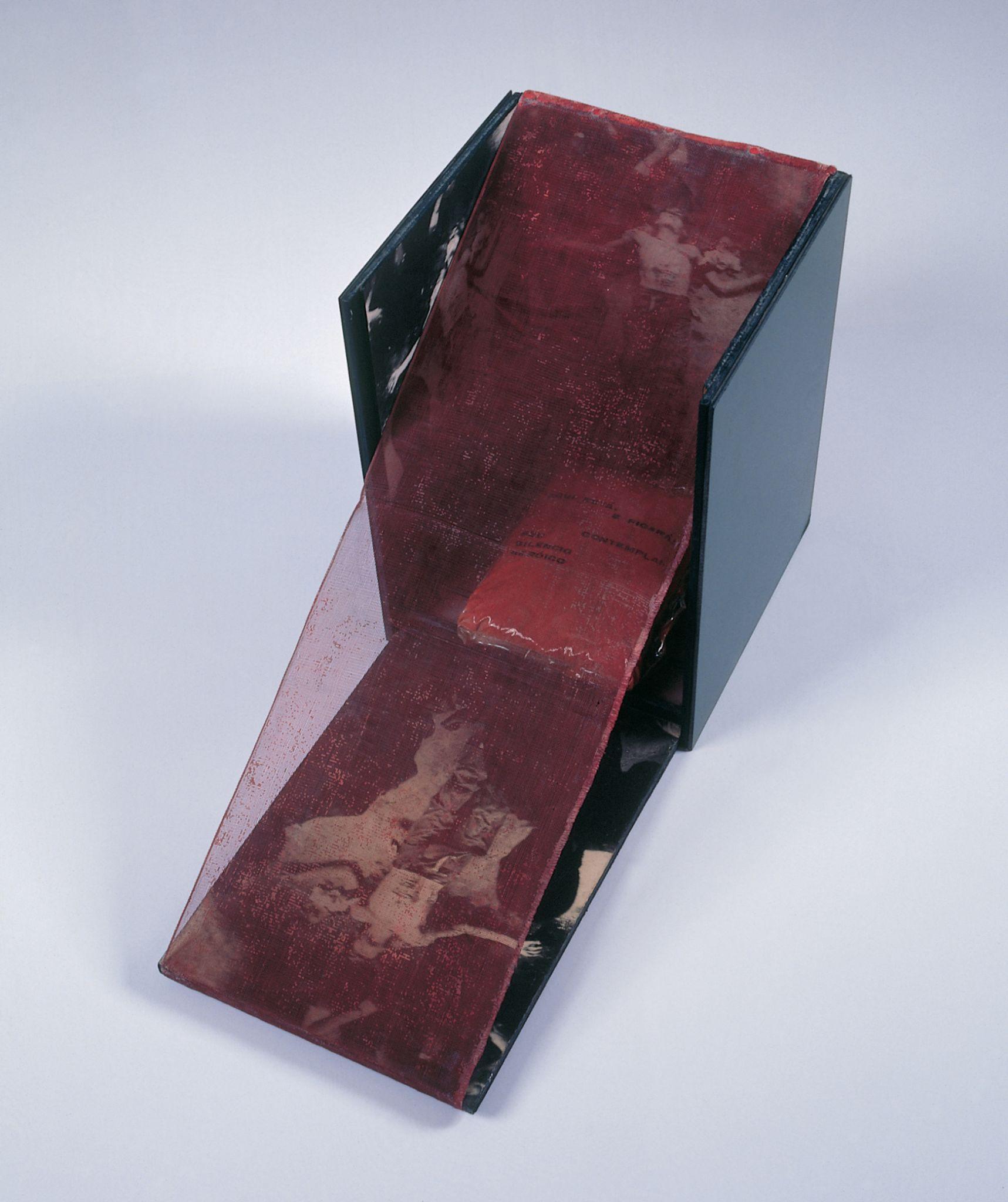 """B 33 Bólide caixa 18 """"Homenagem a Cara de Cavalo"""", 1966, Hélio Oiticica"""