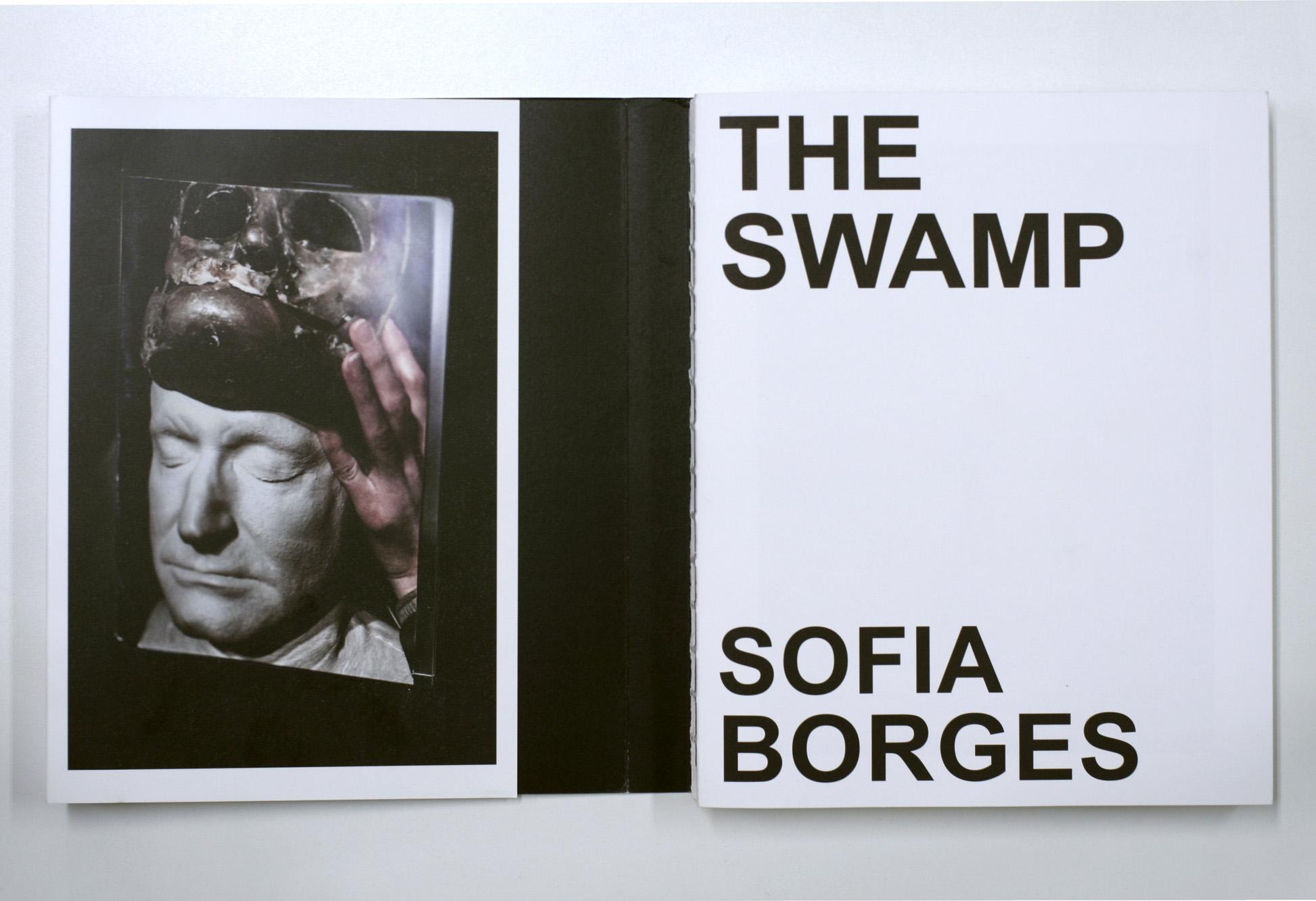 Sofia Borges, O pântano, 2016