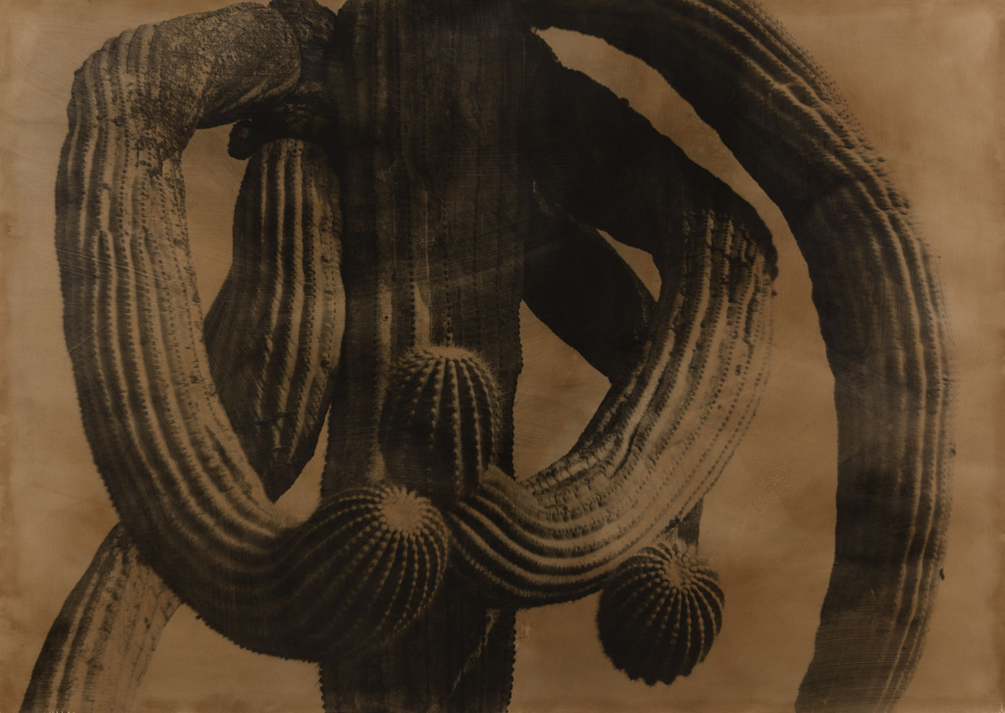 05_ Jungjin Lee, American Desert II 94-03