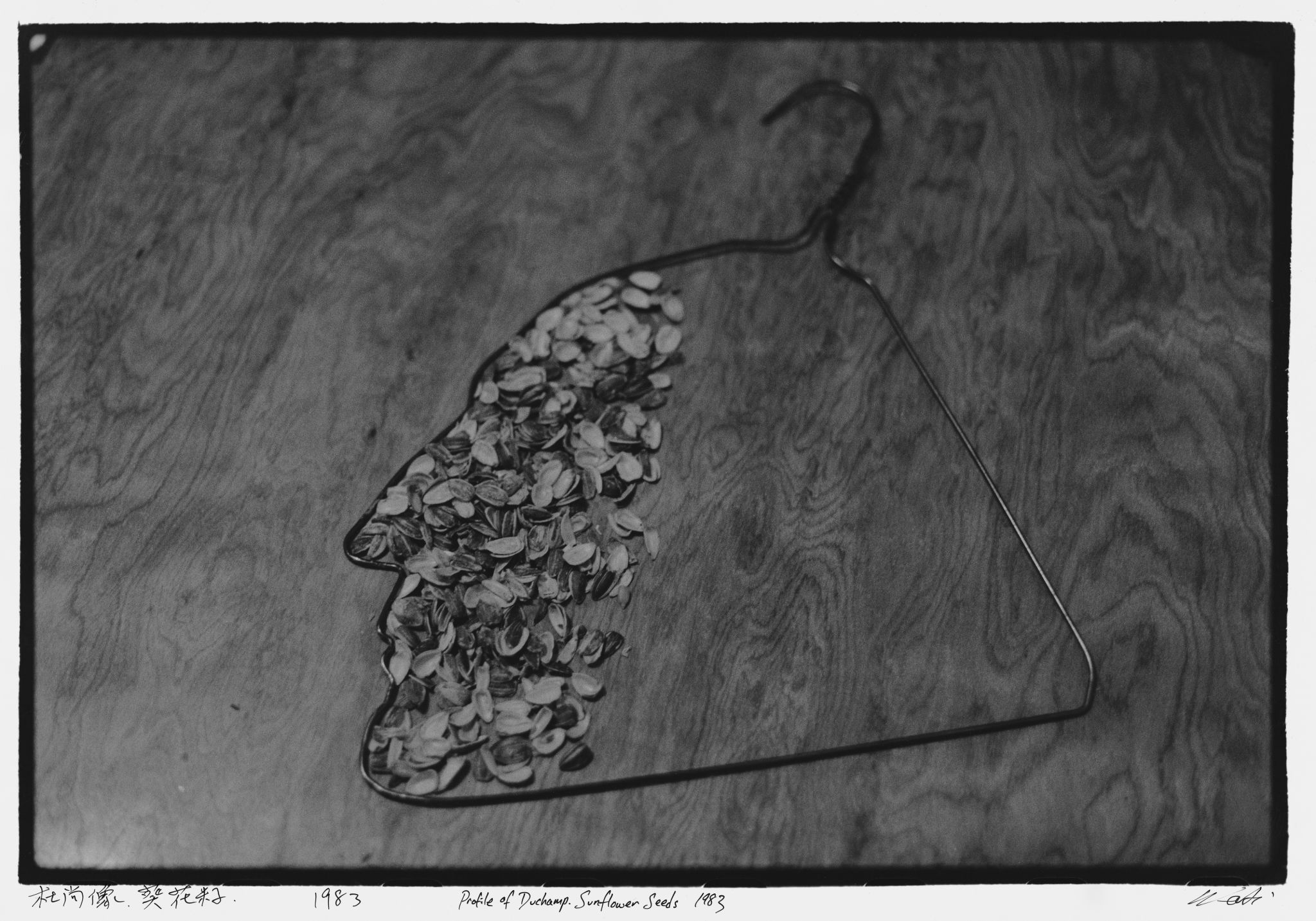 4_New York Photographs 1983-1993, Profile of Duchamp, Sunflower Seeds, 1983