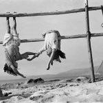 """O peso e a graça: A fotografia """"As filhas do pescador"""", de Sergio Larrain"""